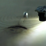 Listen to Music Made by Trees (Literally) in