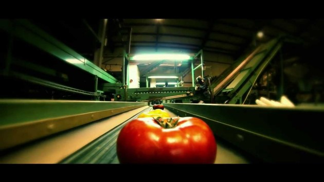 See How a Tomato Travels from the Farm to Your Kitchen in