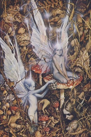 """""""Faeries,"""" a Classic Art Book by Faery Gurus Brian Froud and Alan Lee"""