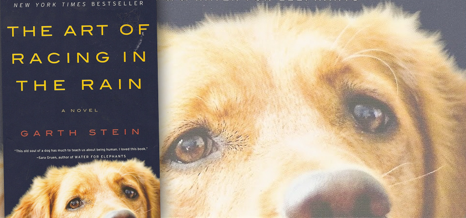 "It's a Dog's Life: A Review of ""The Art Of Racing In The Rain"" by Garth Stein"