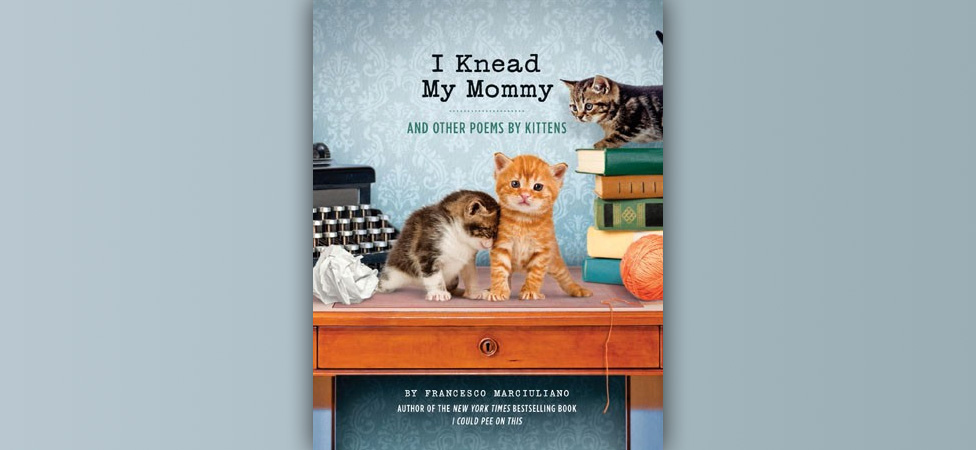 "See the World Through a Kitten's Eyes in ""I Knead My Mommy and Other Poems By Kittens"""