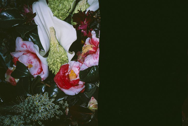 "Nobuyoshi Araki's ""Love on the Left Eye"" Photo Series Shows Life Askew (NSFW)"