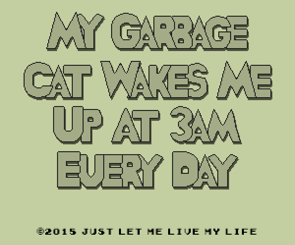 "Experience the Pain All Cat Owners Know in ""My Garbage Cat Wakes Me Up at 3 AM Every Day"""