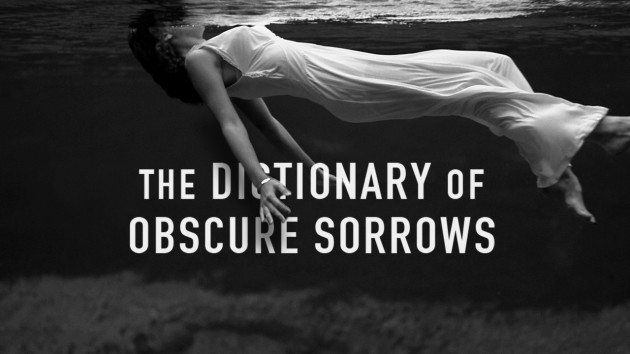 Obscure Sorrows: A Fake Dictionary That Feels All Too Real